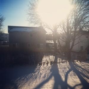 snowstagram
